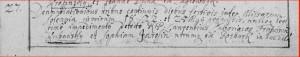 1732 ślub Franciszka kopia