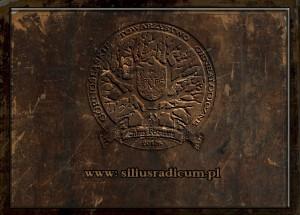 siliusradicum.pl