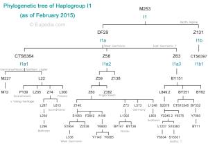I1-tree